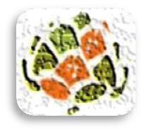 gardeniser logo cemea
