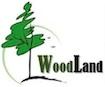 woodland cemea scambio internazionale giovani