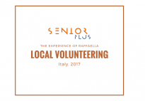 A local volunteering experience